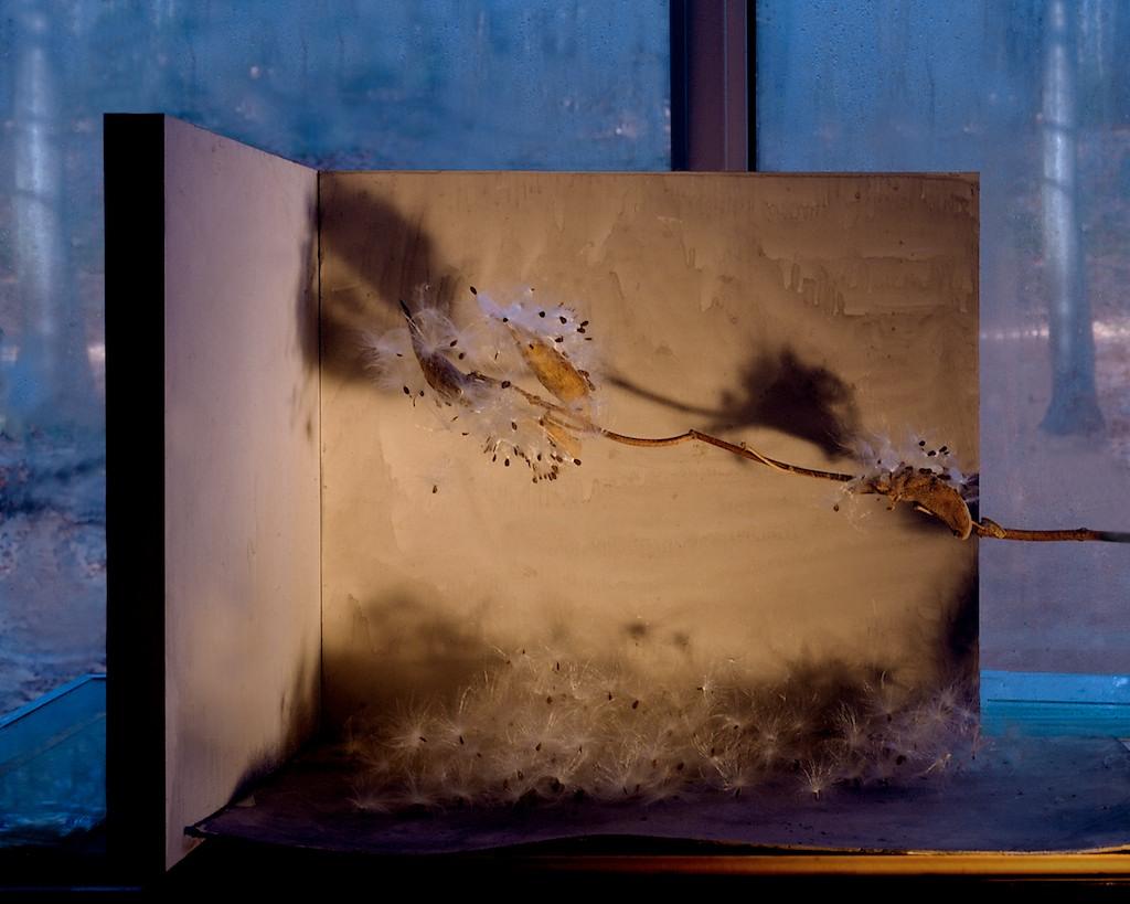 Night Sets (002) condensation) 2004
