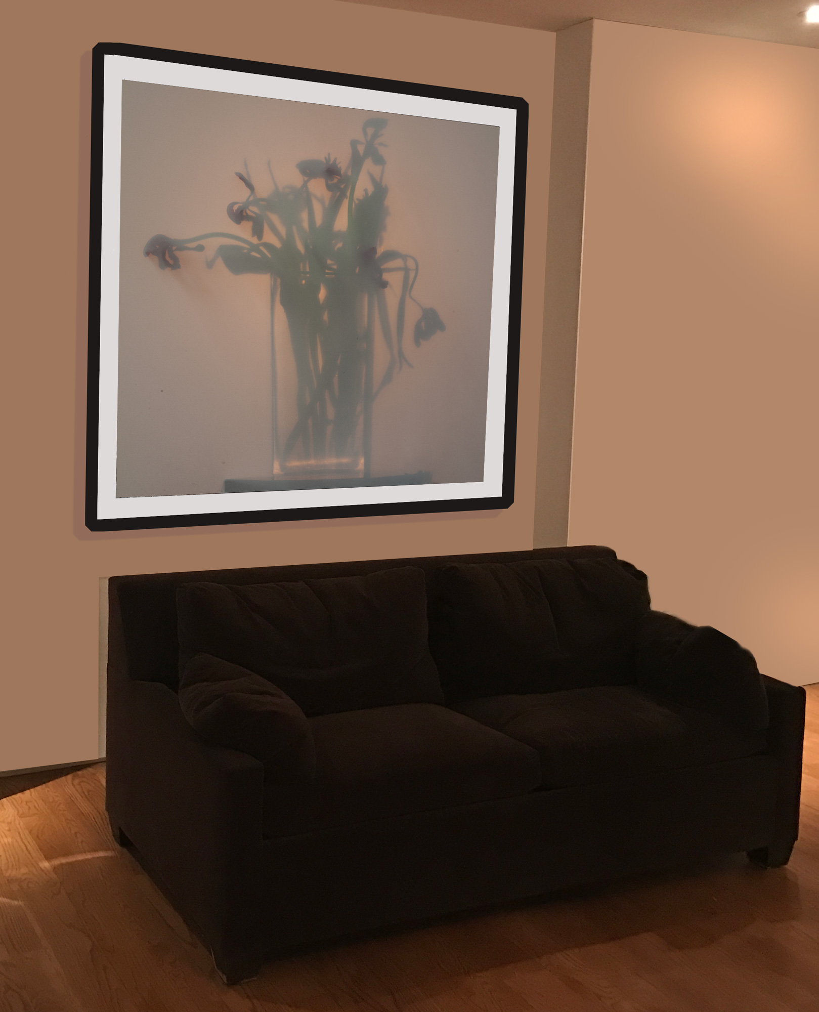 from the SHADOWS Series Shadows ,Amaryllis 1a, 2015-17. framed