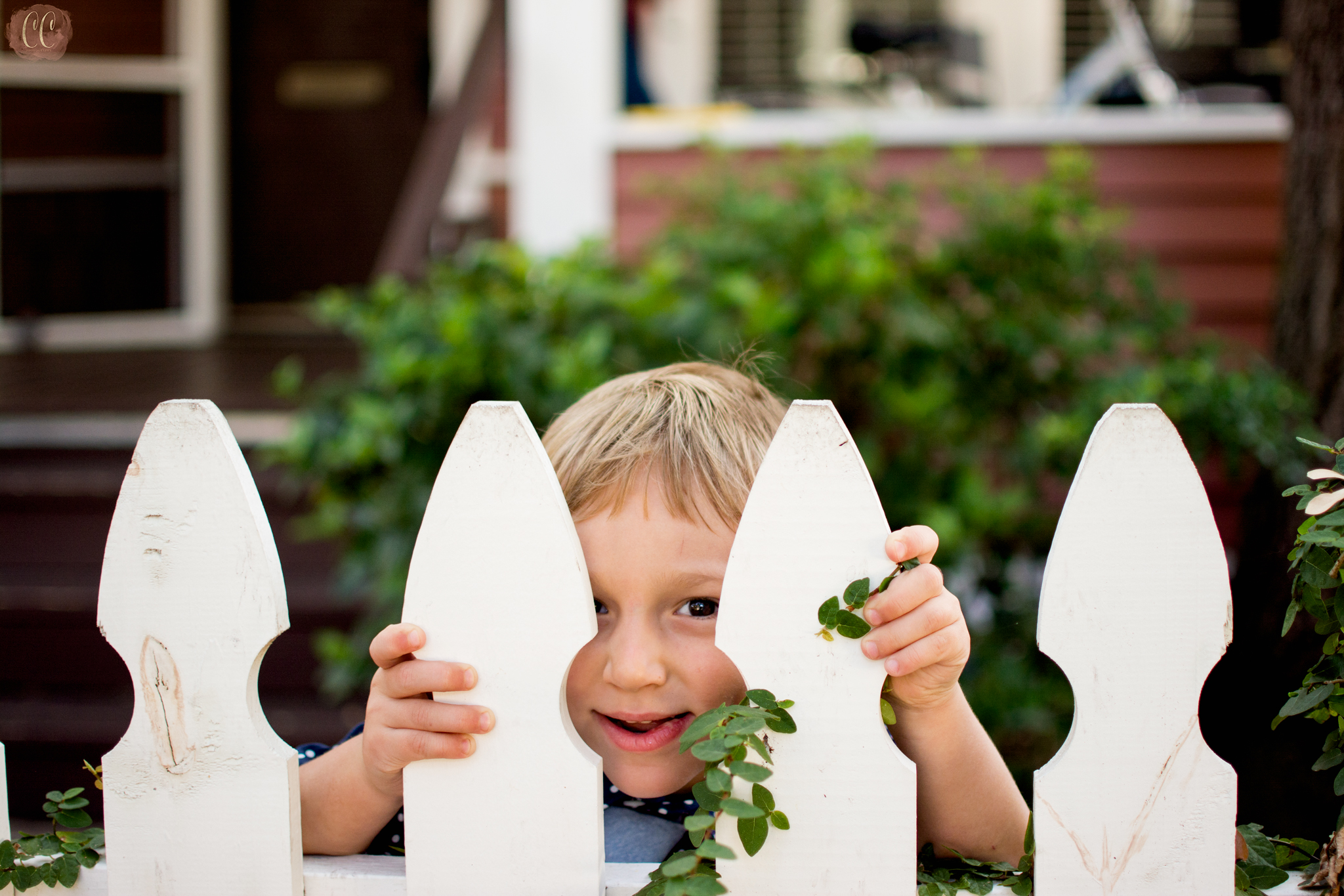 Little boy looks through fence at family photographer Carlie Chew Photography in Hyde Park Tampa.