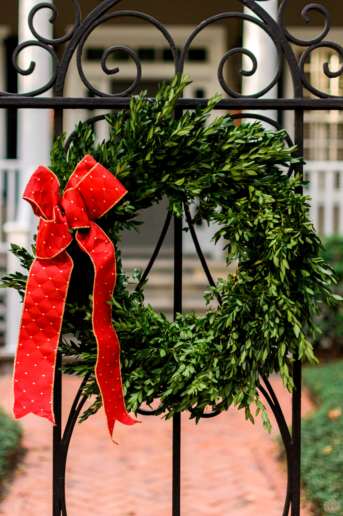 Florida Photo Safari with Carlie Chew Photography and The Florida Museum of Photographic Arts, Christmas Wreath in Hyde Park Village