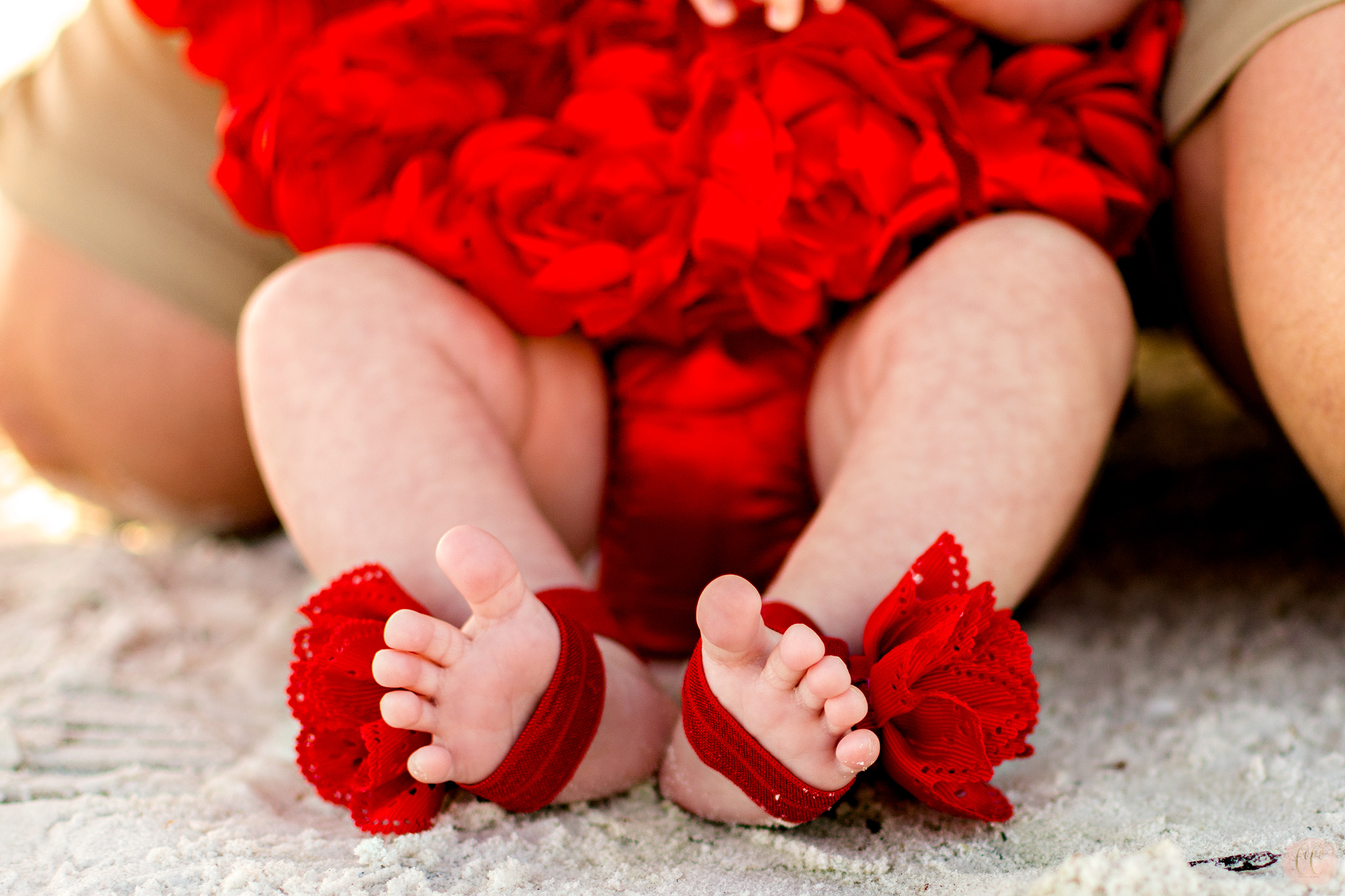 Newborn baby feet at family photos in Dunedin, Florida with Carlie Chew Photography