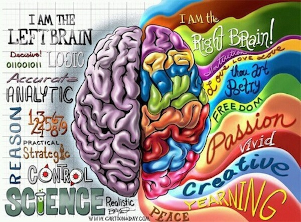 Right brain/left brain thinking