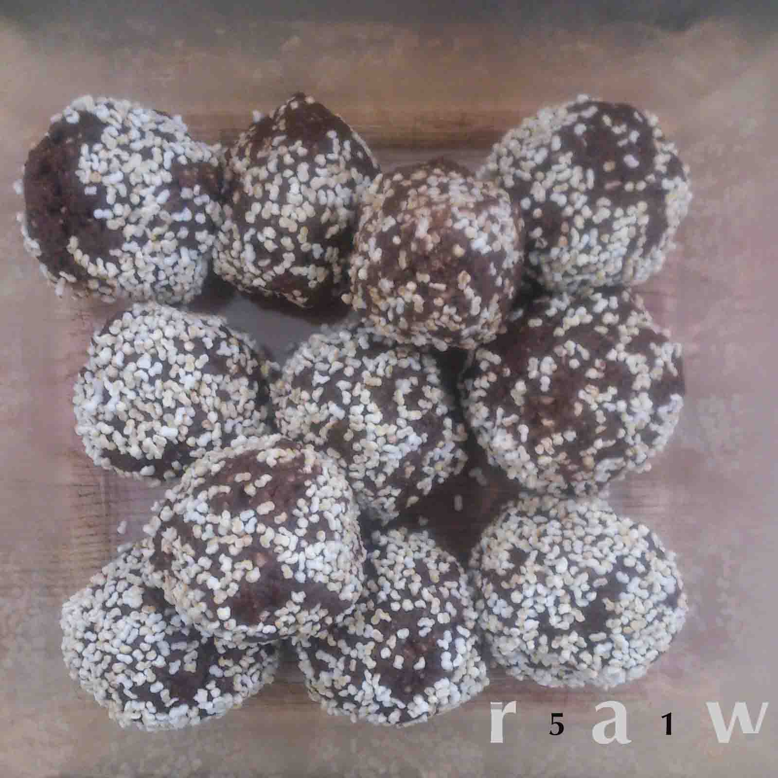 51raw_ChocPeanutRawBalls.jpg