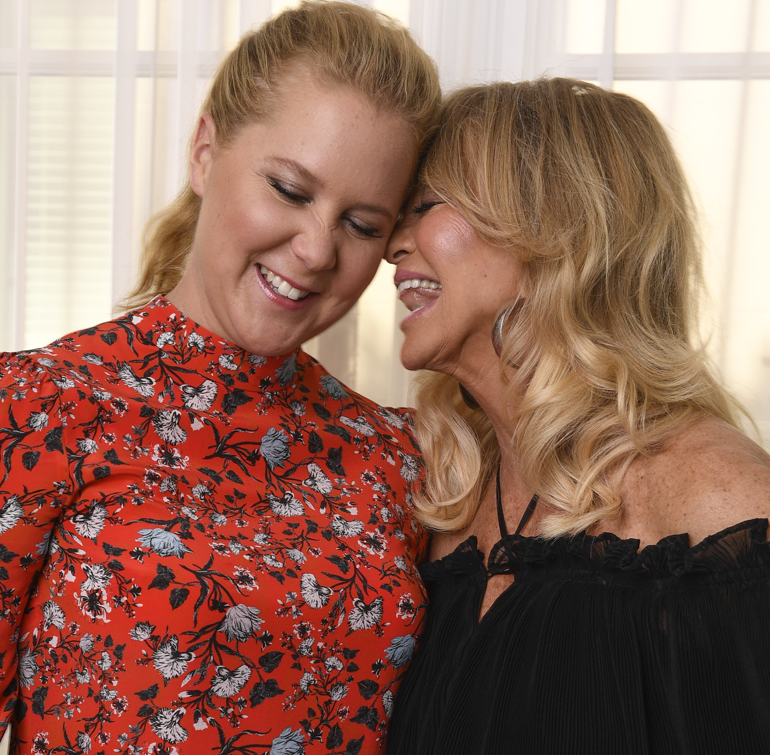 XXX Amy Schumer and Goldie Hawn170_90459498COPY.jpg