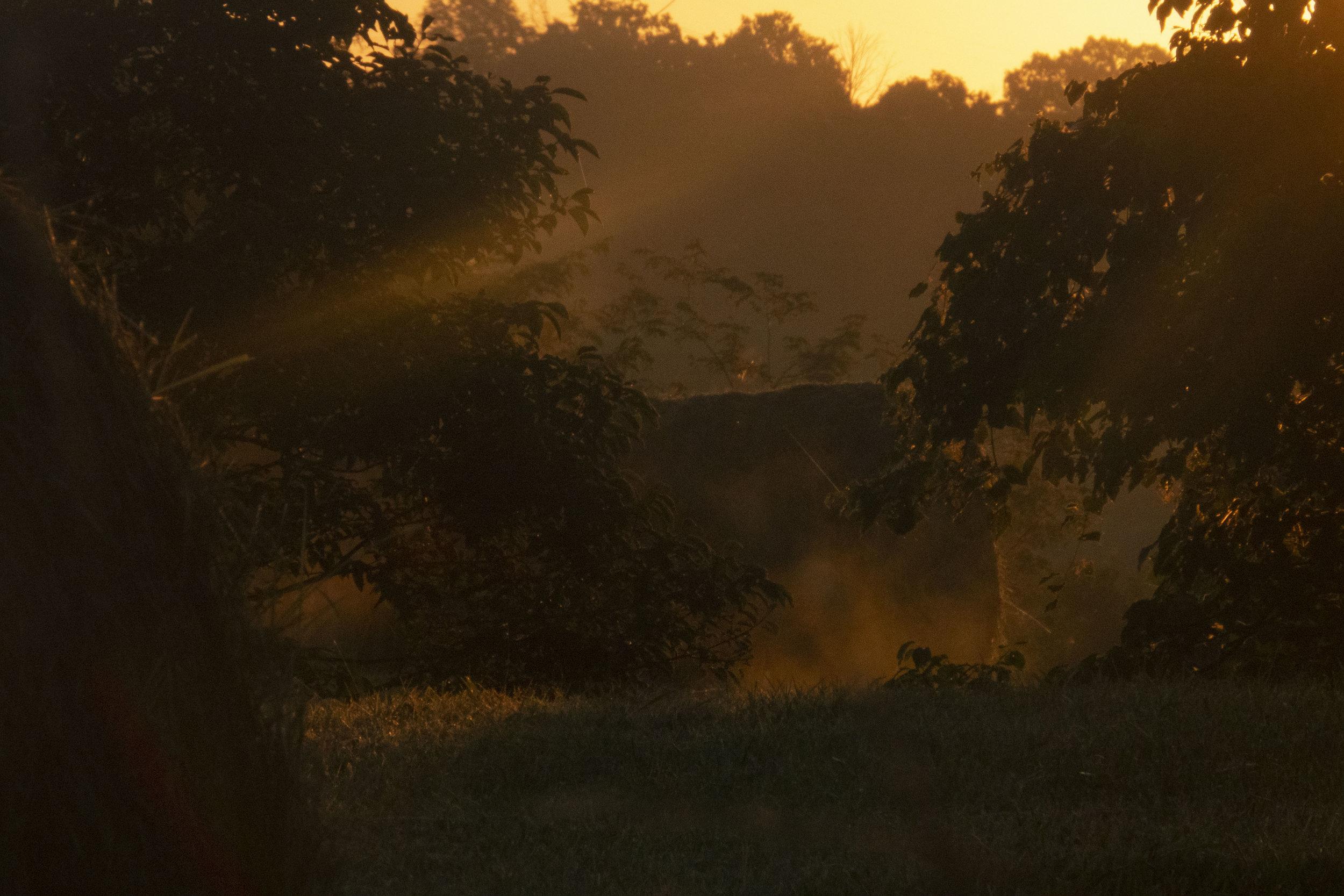 - Dawn to Dusk1.jpg