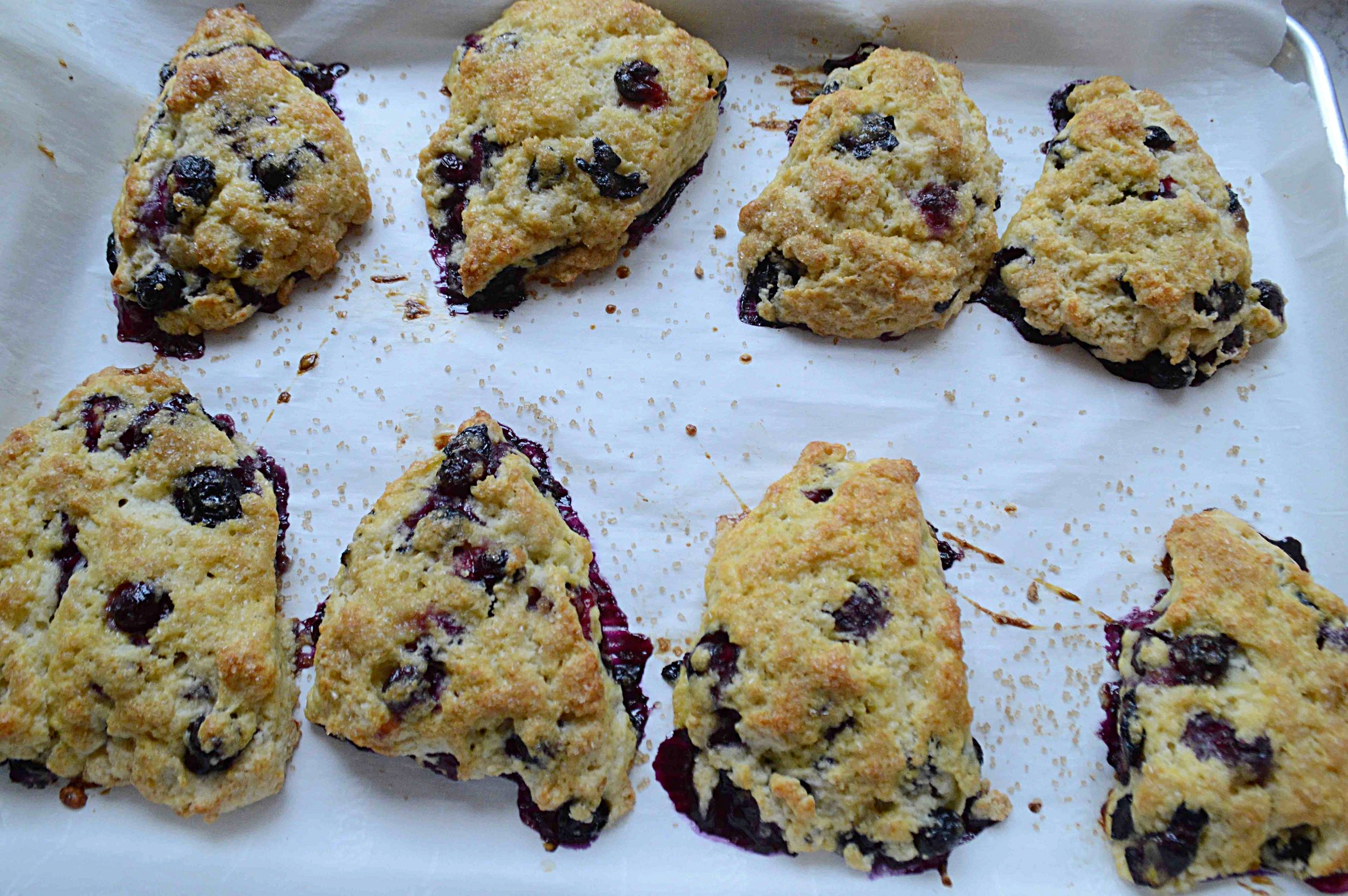 Blueberry Lemon Cornmeal Scones