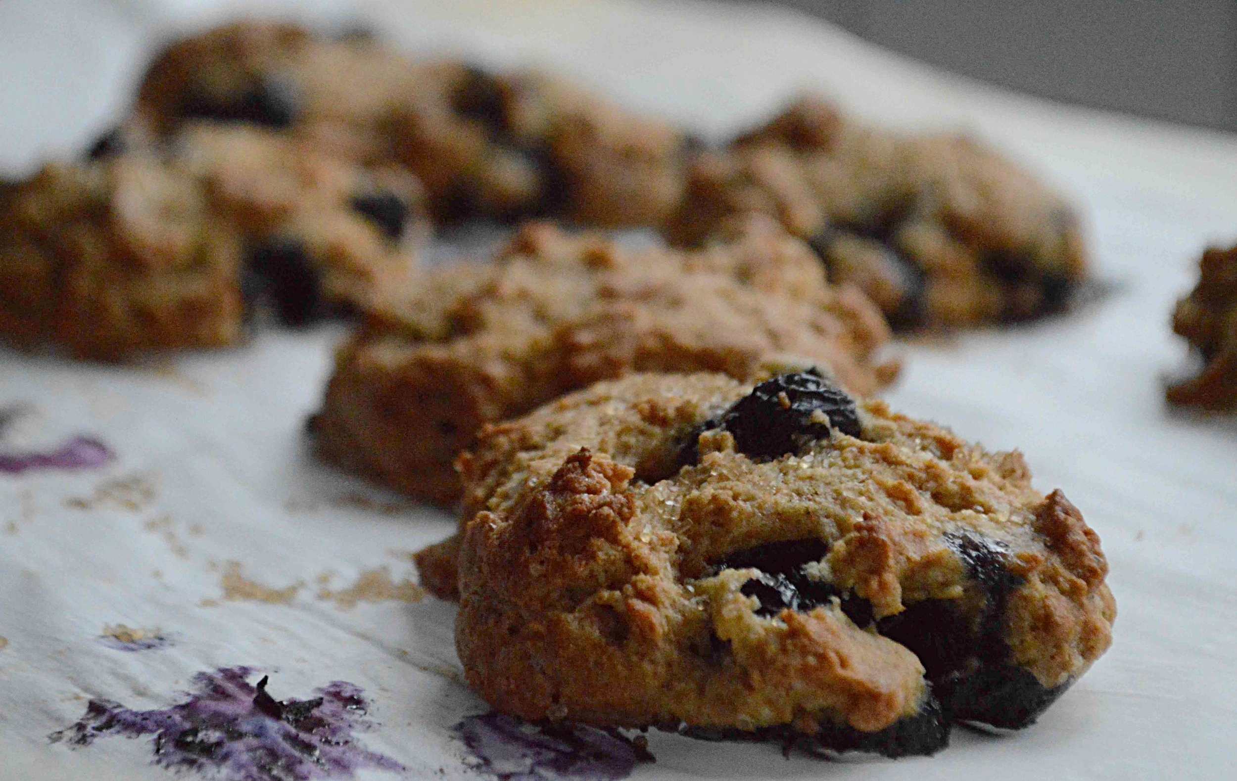 Wholegrain Blueberry Yogurt Scones