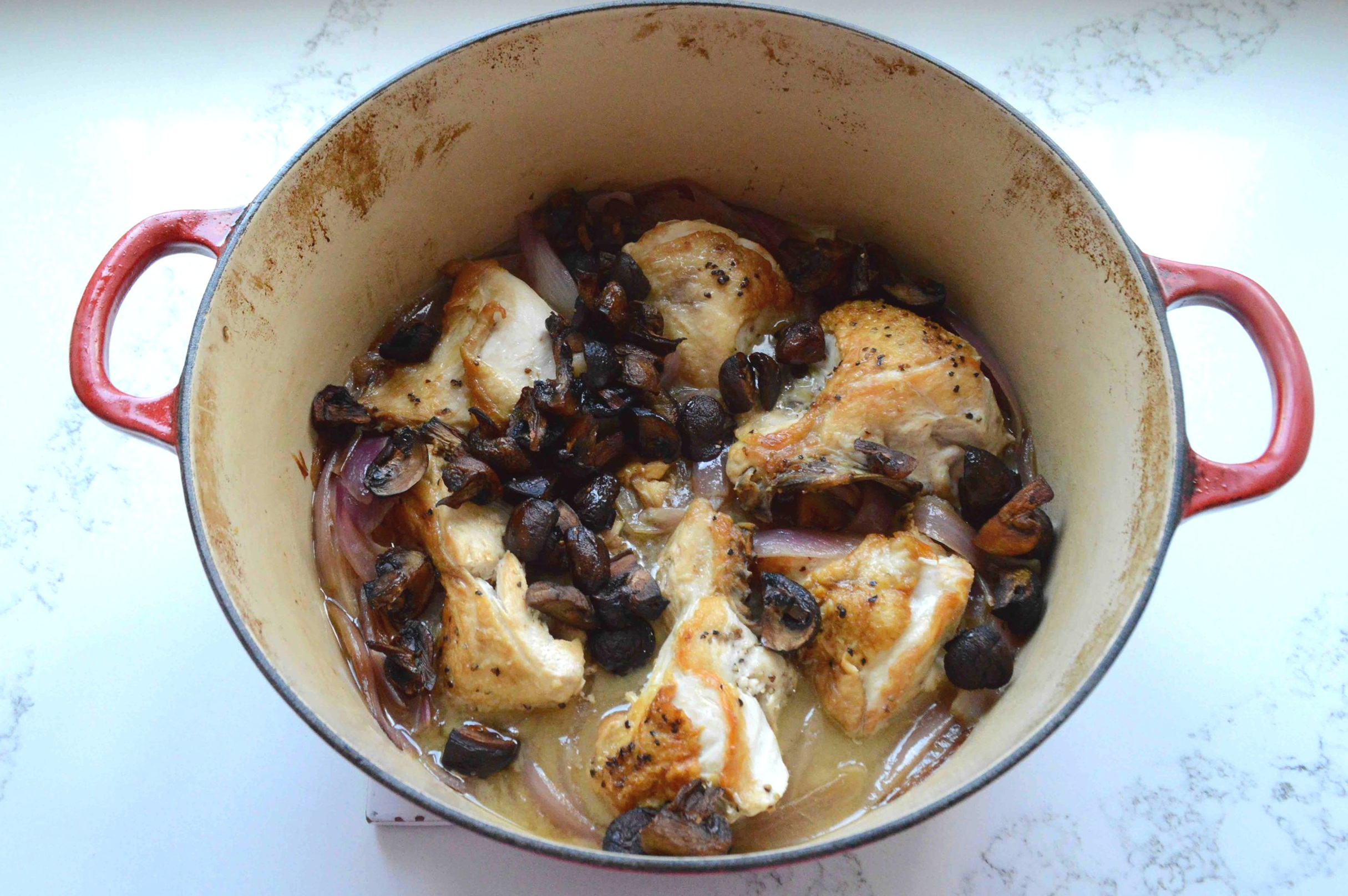 One-Pot+Vinegar+Chicken+with+Onions+and+Roasted+Mushrooms