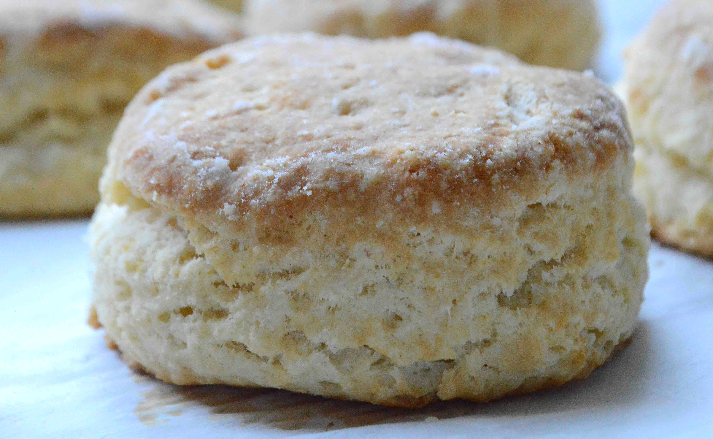 My+Favorite+Buttermilk+Biscuits