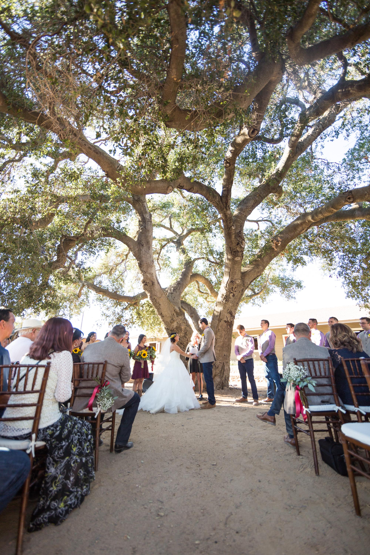 Johnson Wedding_Ceremony-147.jpg