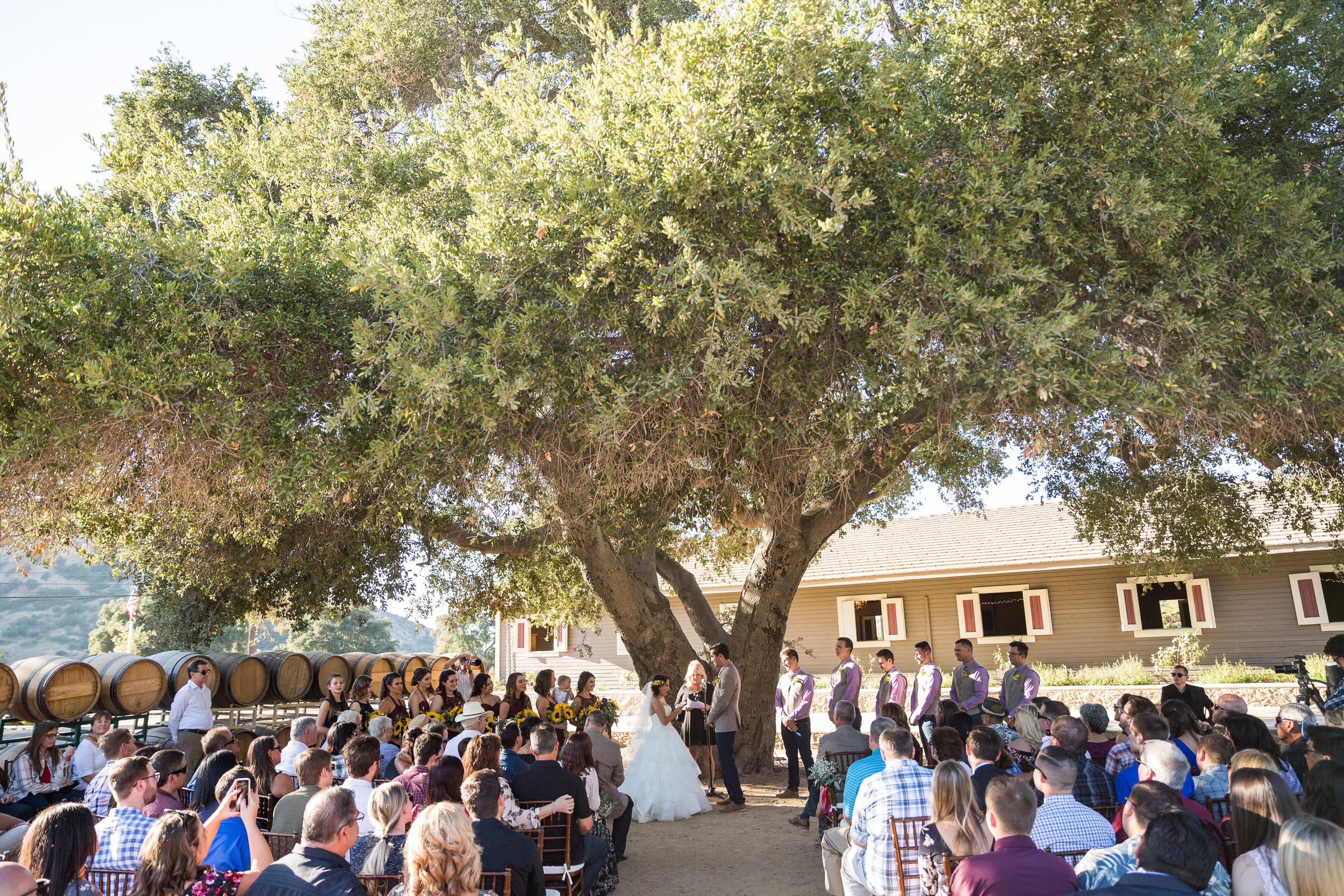 Johnson Wedding_Ceremony-163.jpg