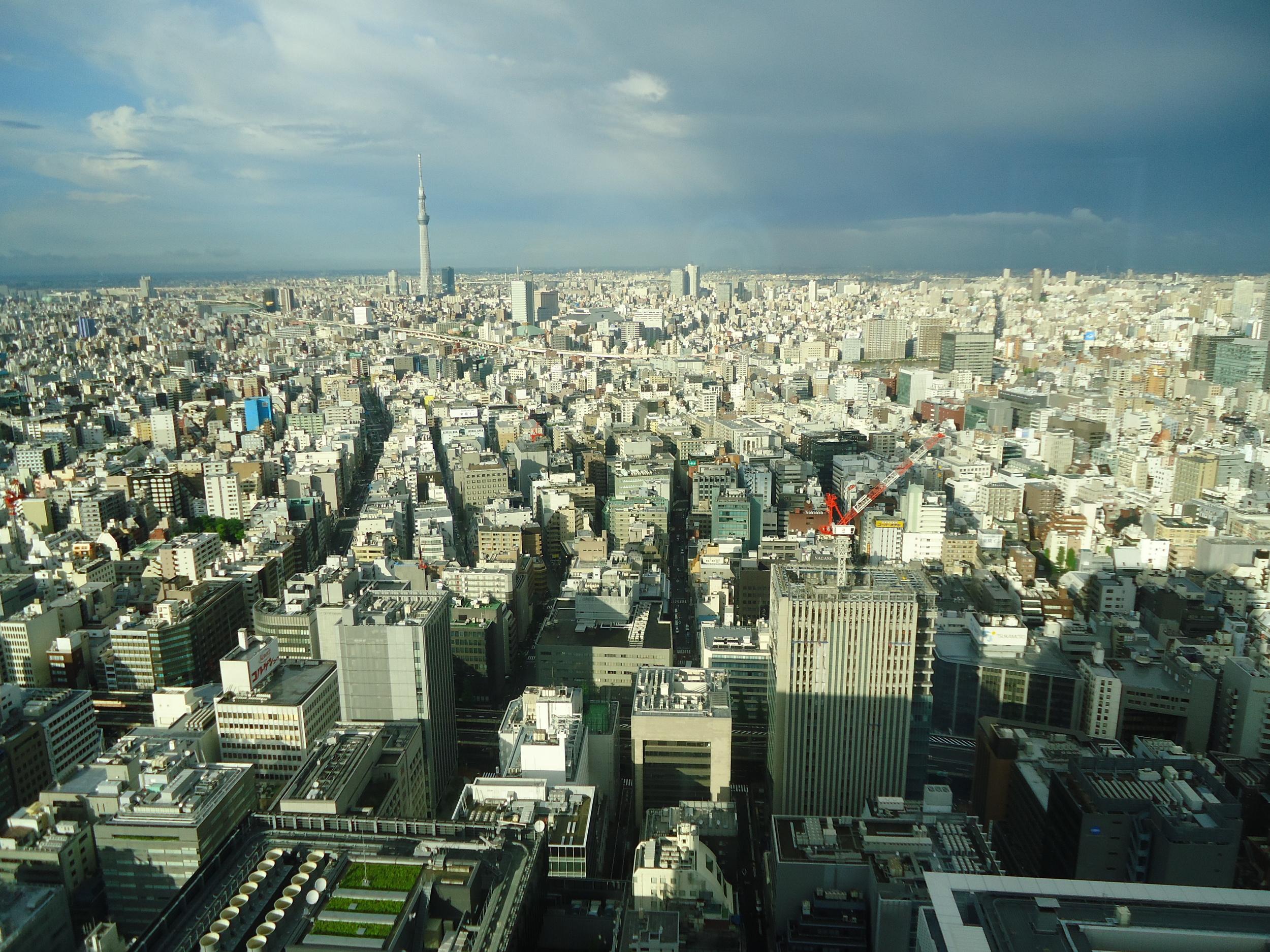 Tokyo view from Mandarin Hotel restroom