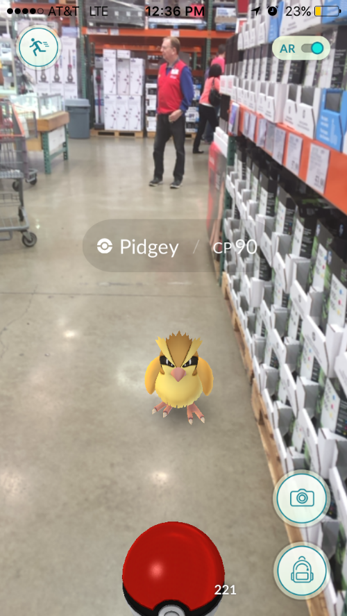 Wholesale Pokémon. Photo credit: Janisha