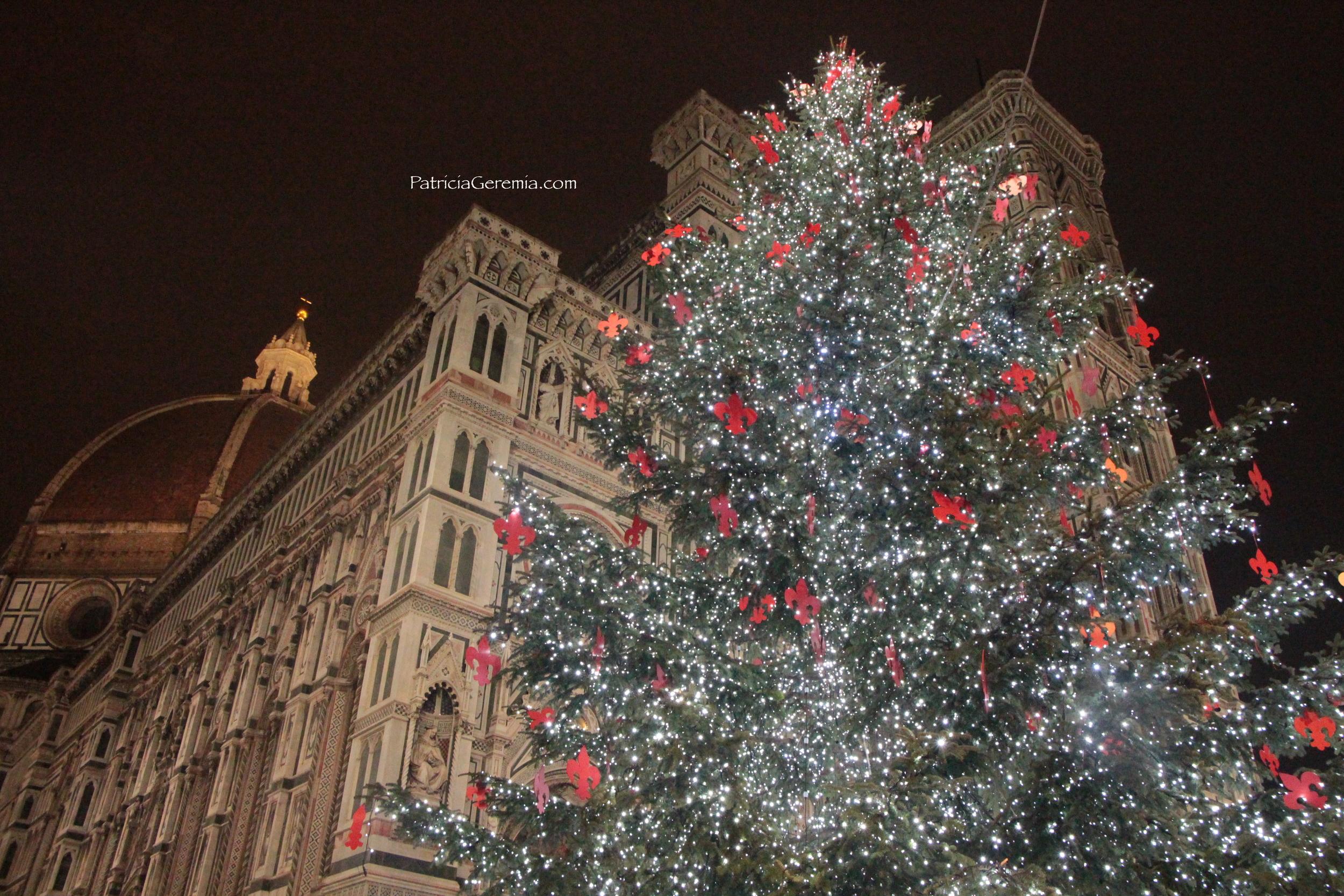 Firenze Christmas tree wm.jpg