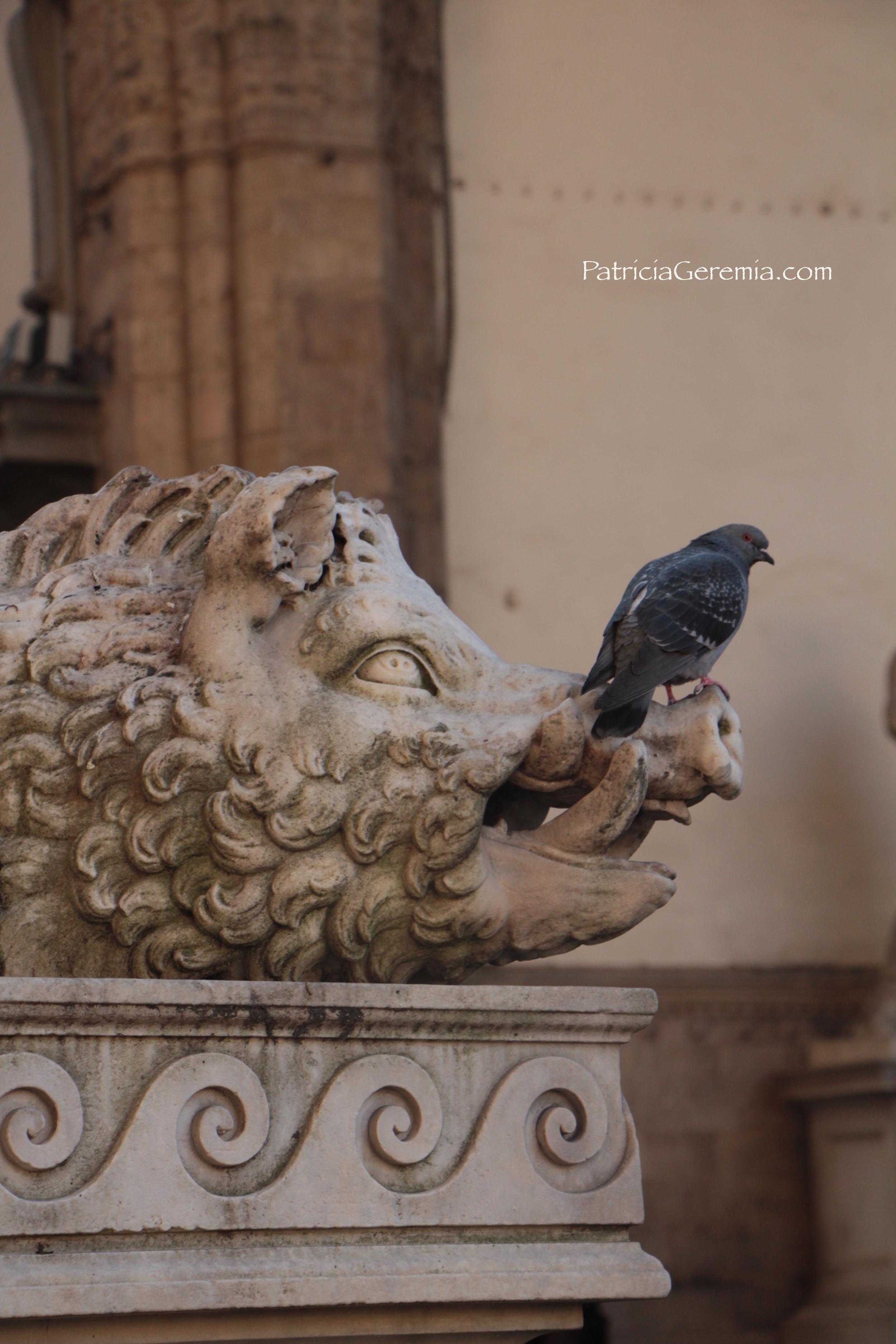 Boar & Bird.jpg