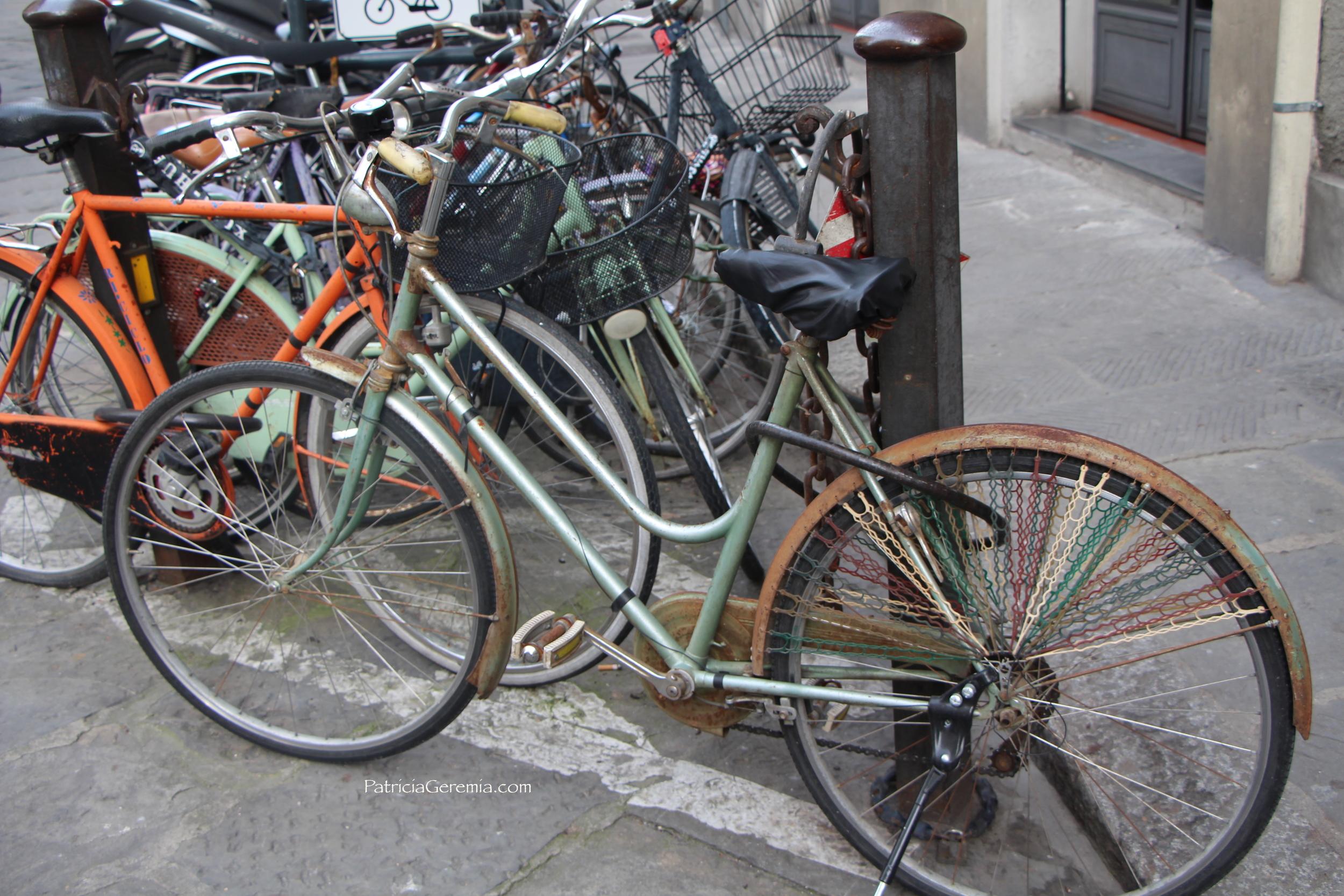 Roberta's Bike.JPG