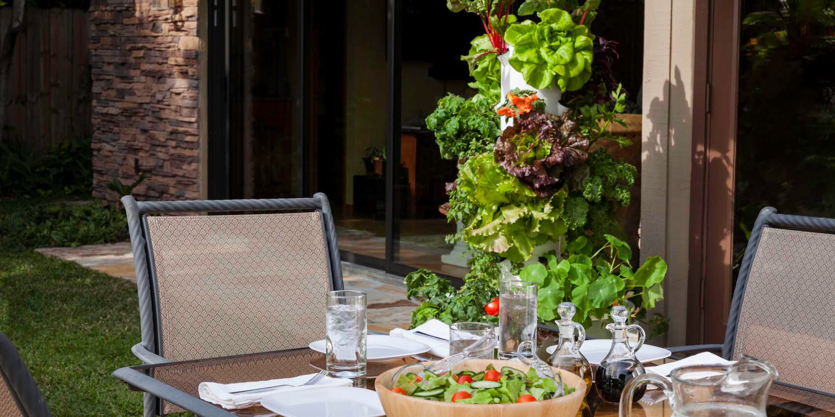 superfood-tower-garden.jpg