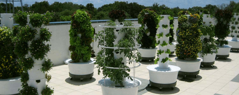 Tower-Garden.png