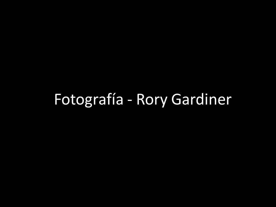 Rory Gardiner.jpg