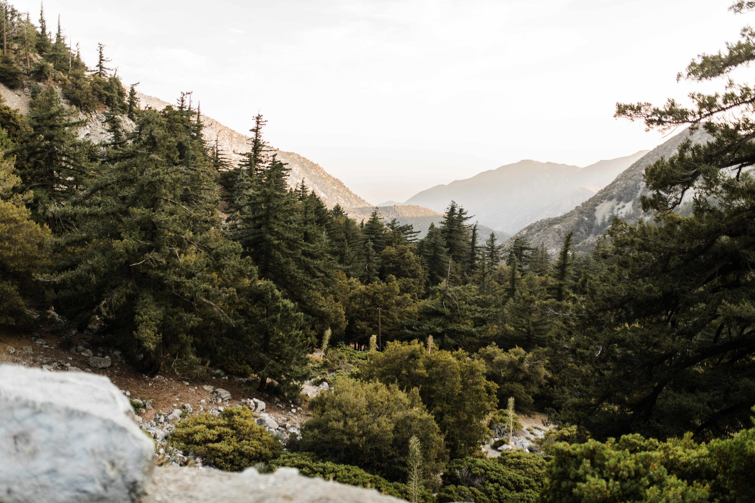 Rachael&Keith-Mount-Baldy-Engagement-Photos-Clarisse-Rae-Southern-California-Wedding-Photographer_59.jpg