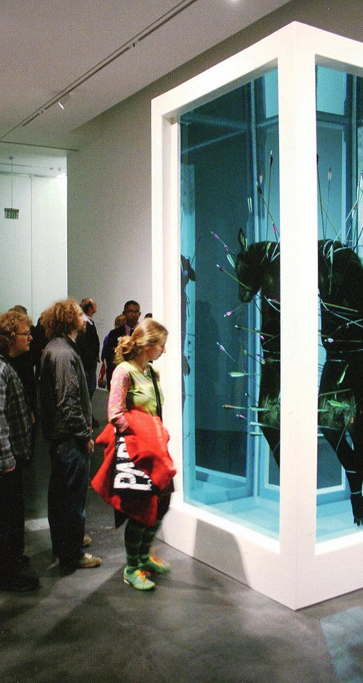 Installation view of  Damien Hirst  at the Museum of Contemporary Art, October 10, 2008 - August 30, 2009.