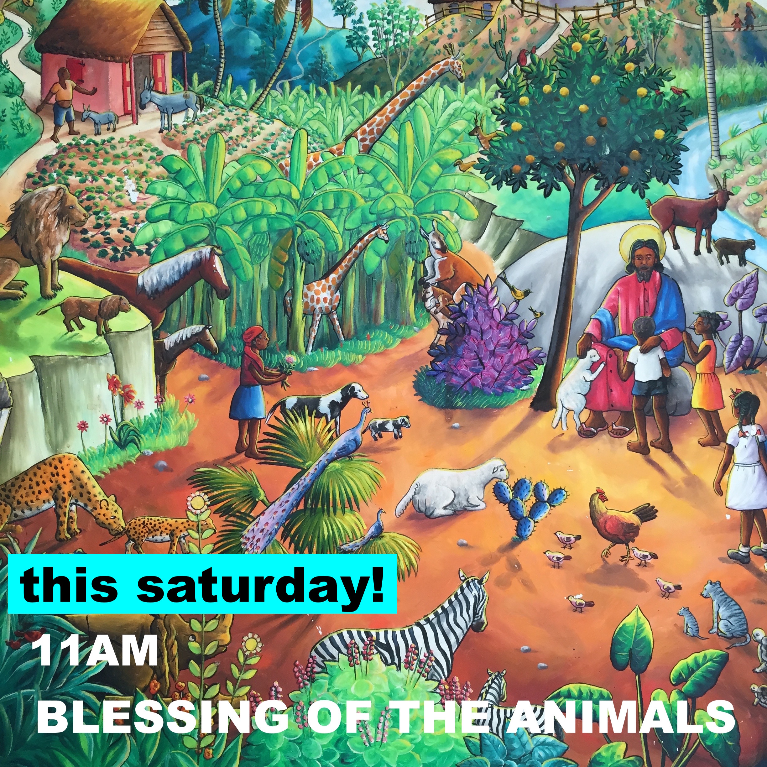 animal blessing copy.jpg
