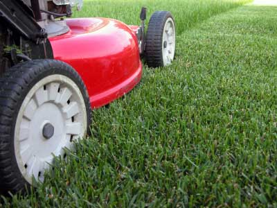 Could I capture the smell of freshly cut grass?  Photo Credit: Project Management Tips