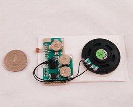 The light-sensitive speaker. Photo Credit: Amazon