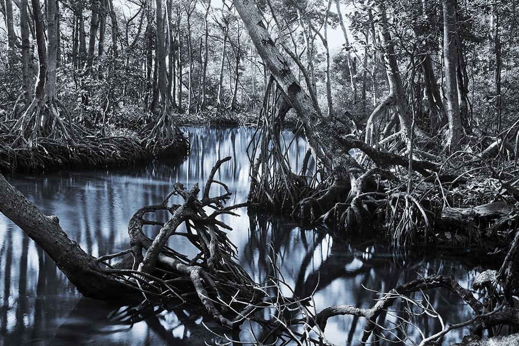 World beyond the water, 2009 chromogenic print, 122 x 183 cm.