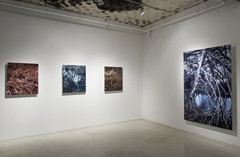 Installation, Galerie Art Mûr