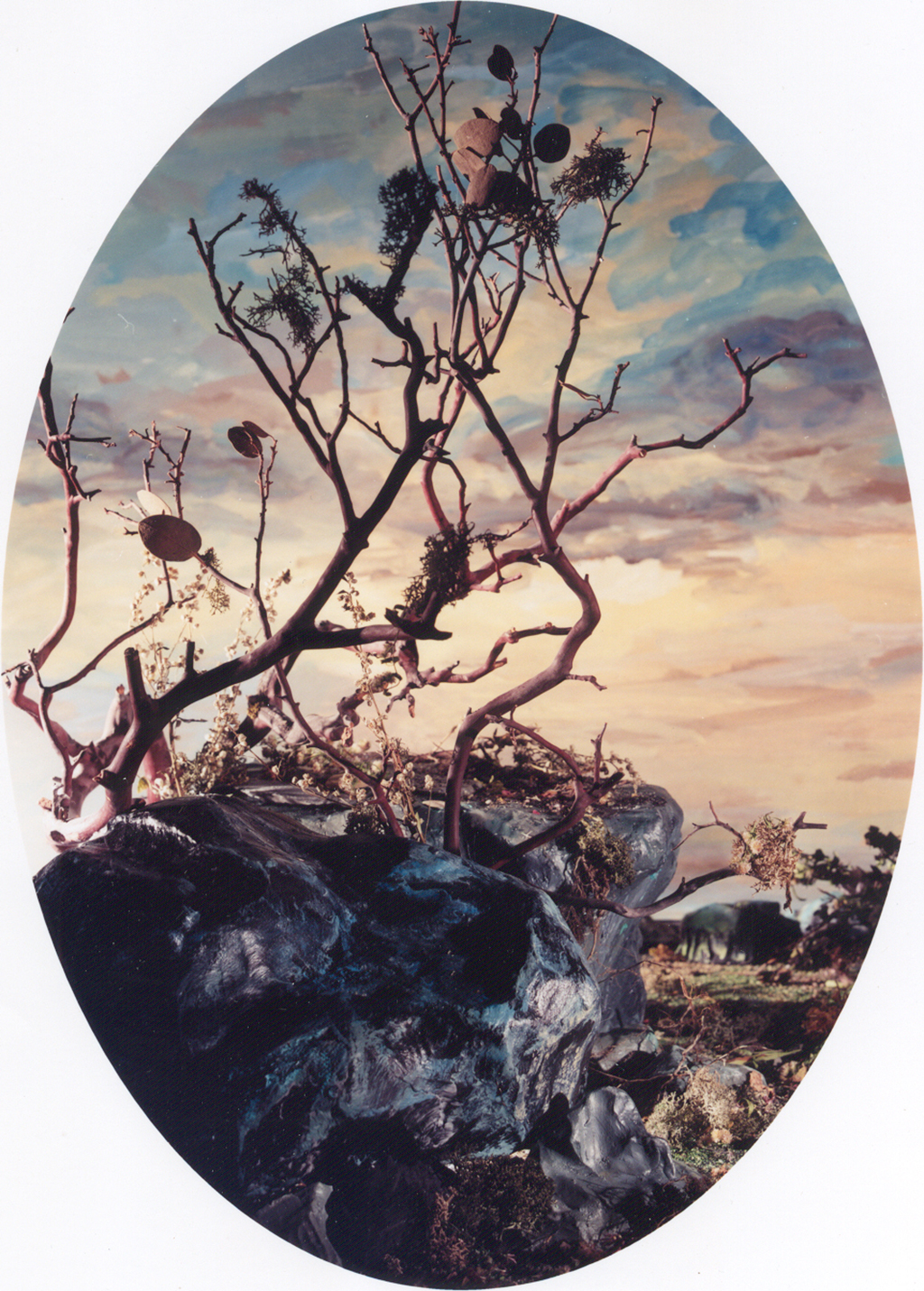 Grace, 2002, chromogenic print, 153 x 109 cm edition of 5
