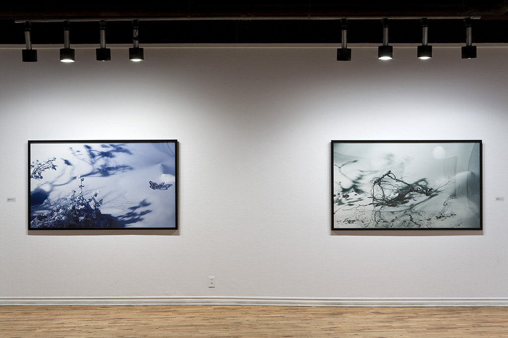 Installation View, McClure Gallery, Montreal