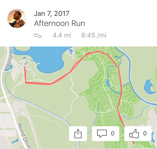Saturday's aborted half marathon.