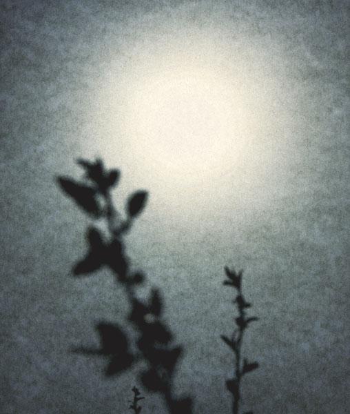 Into the Sun 27