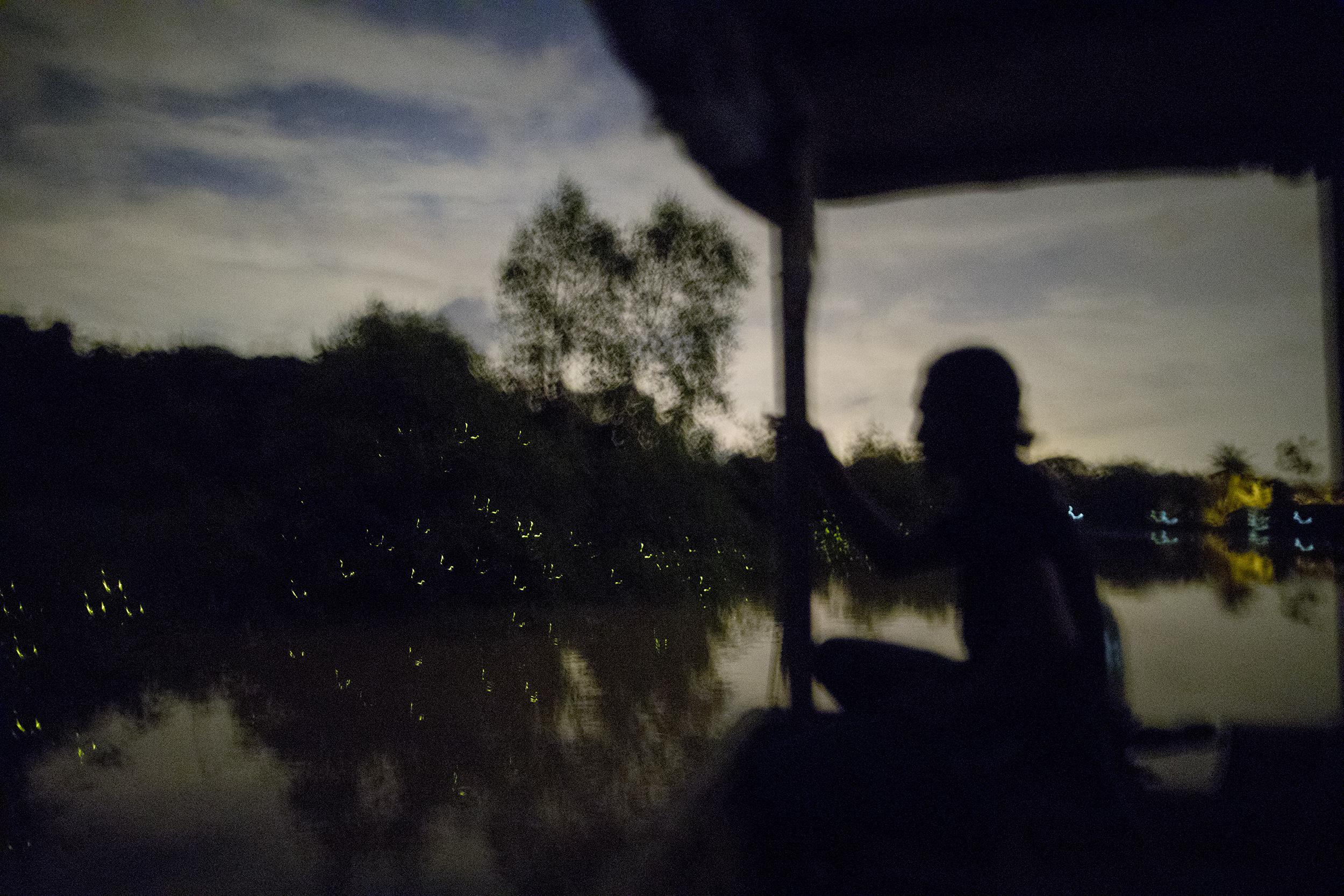 Selangor River at Night, 2017