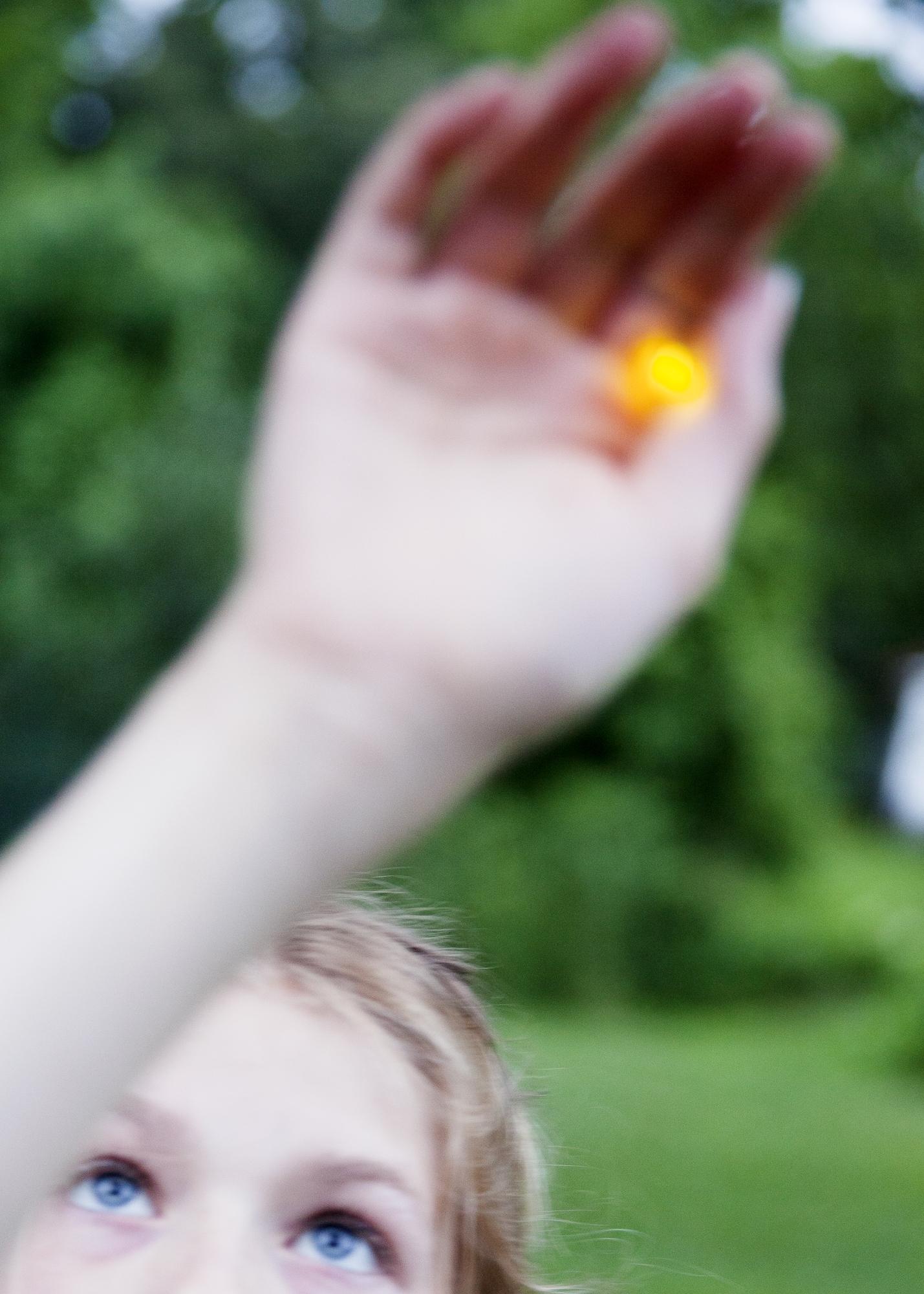 Violet Catching Firefly, Danville, VA.jpg