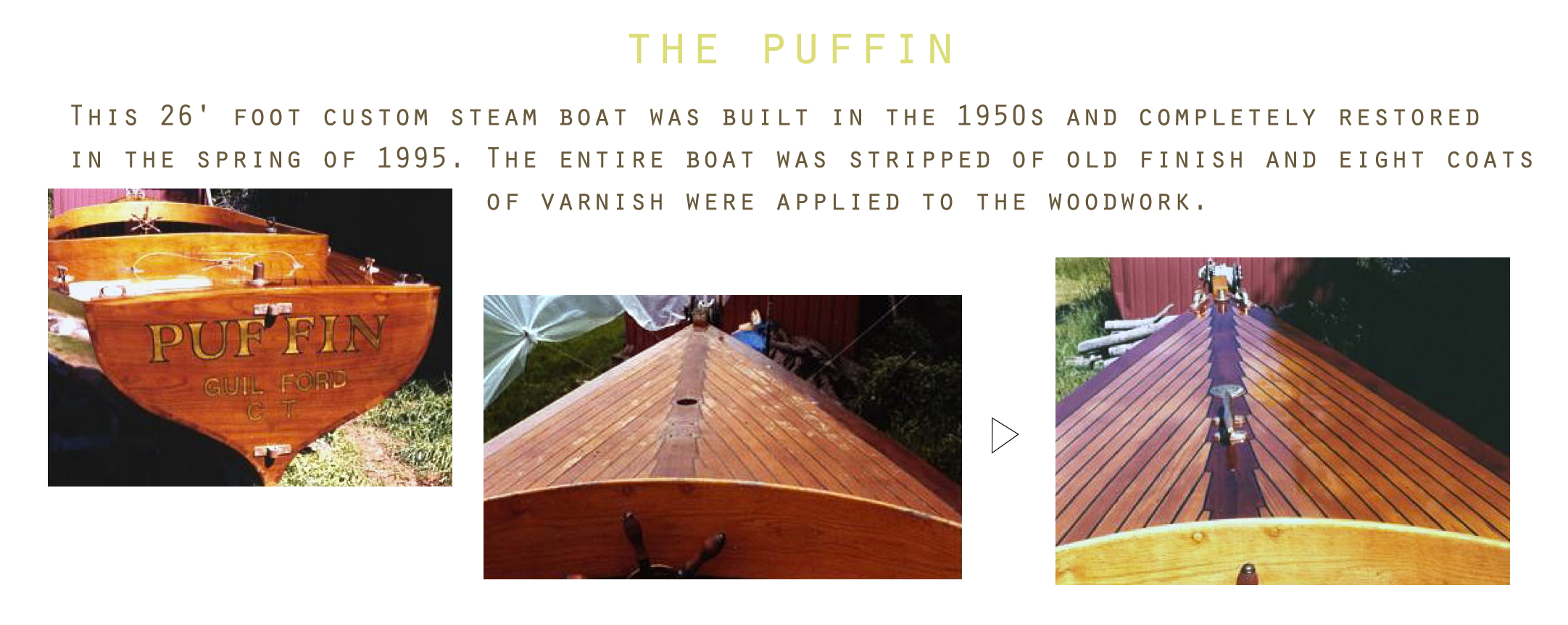 the puffin final 2.jpg