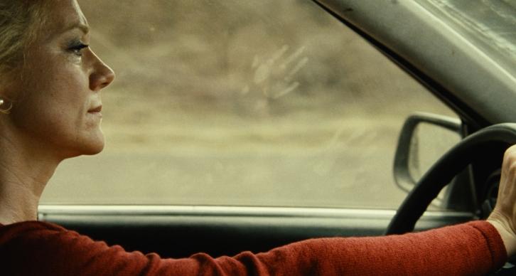 Headless Woman , Lucrecia Martel (2008)