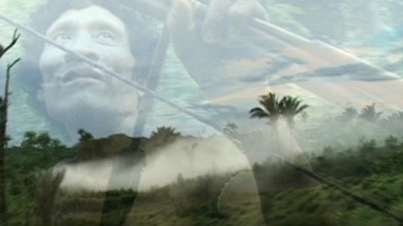 Hills of Disorder ,Andrea Tonacci (2006)
