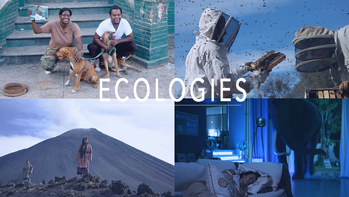 July: Ecologies, FLMTQ Releases 140-143