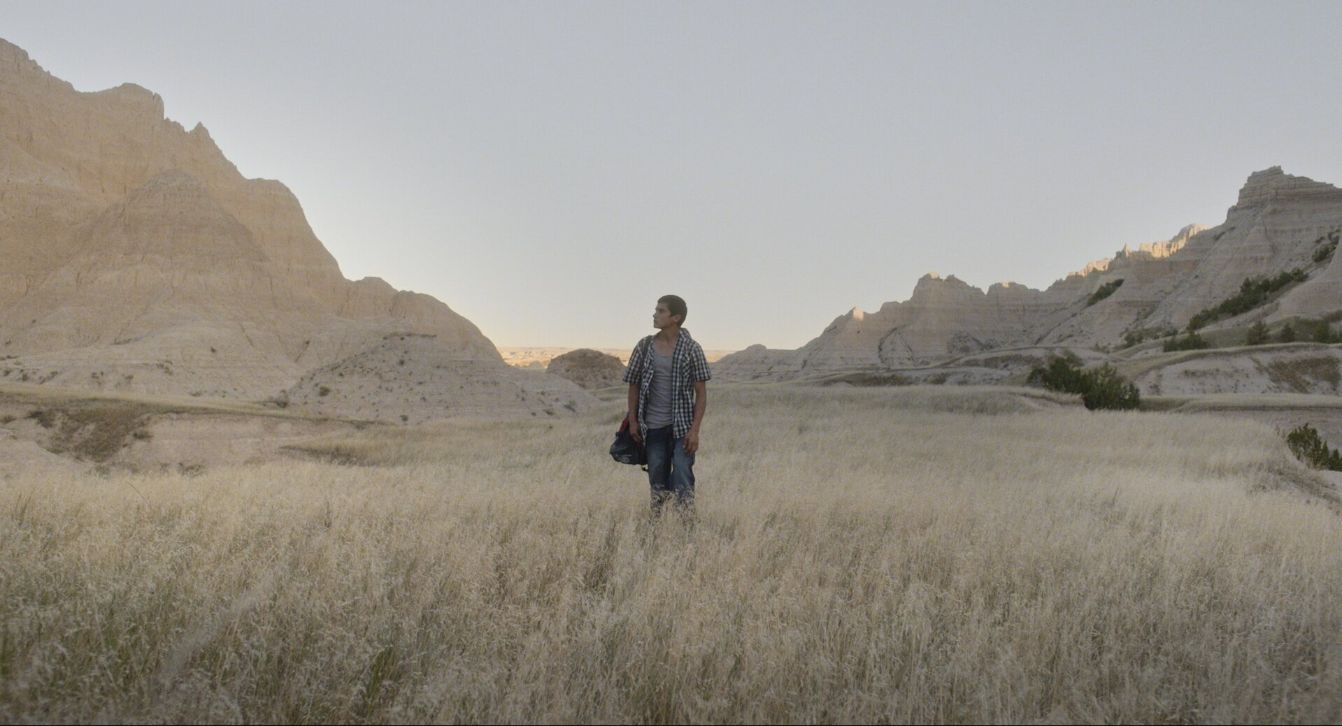 Songs My Brothers Taught Me  , Chloé Zhao (2015)