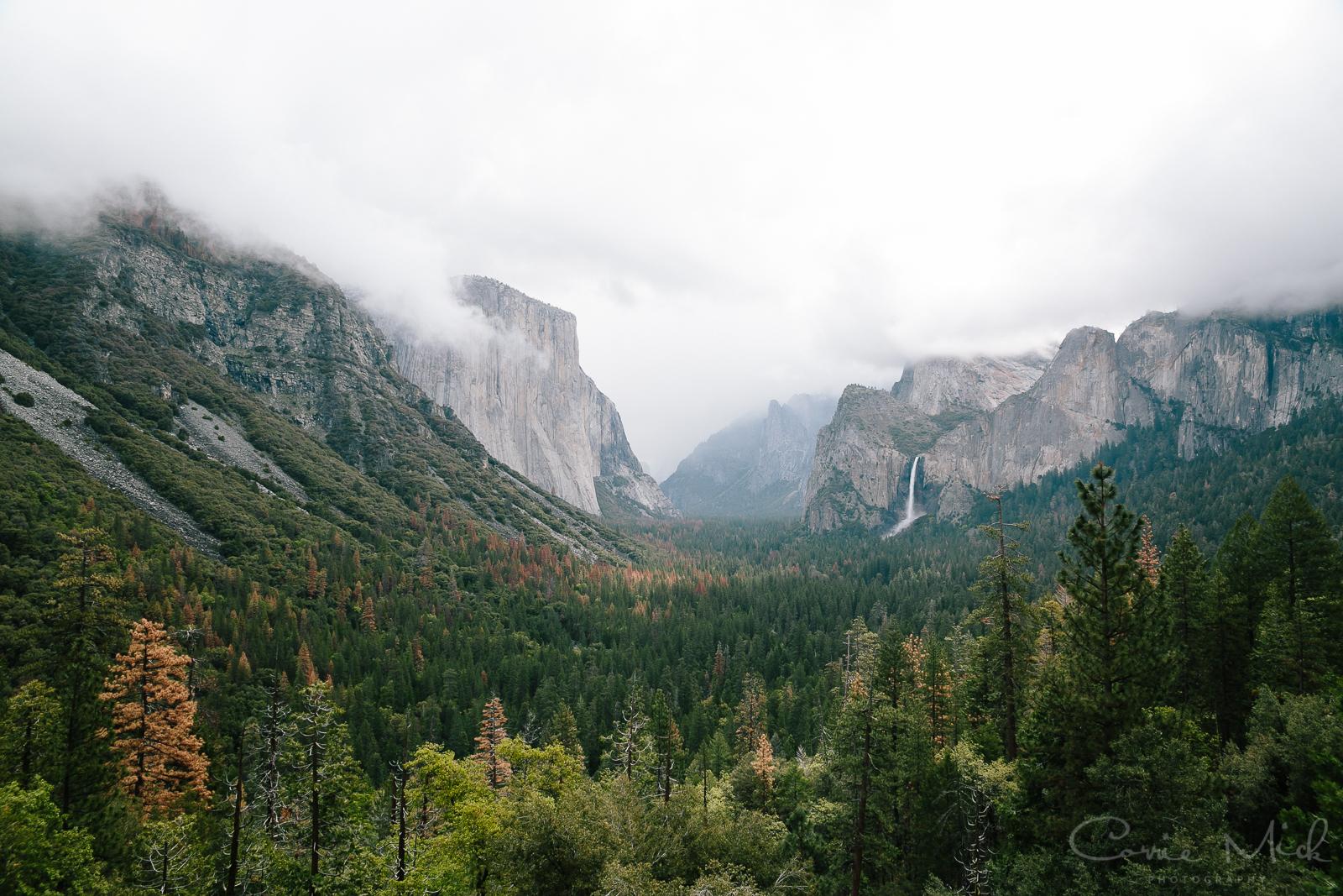 Yosemite April 2016 - Corrie Mick Photography-4.jpg