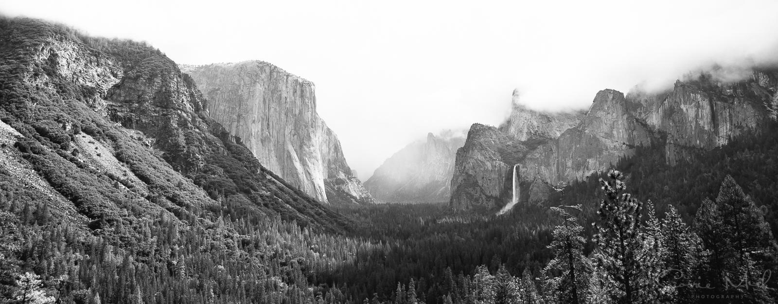 Yosemite April 2016 - Corrie Mick Photography-11.jpg