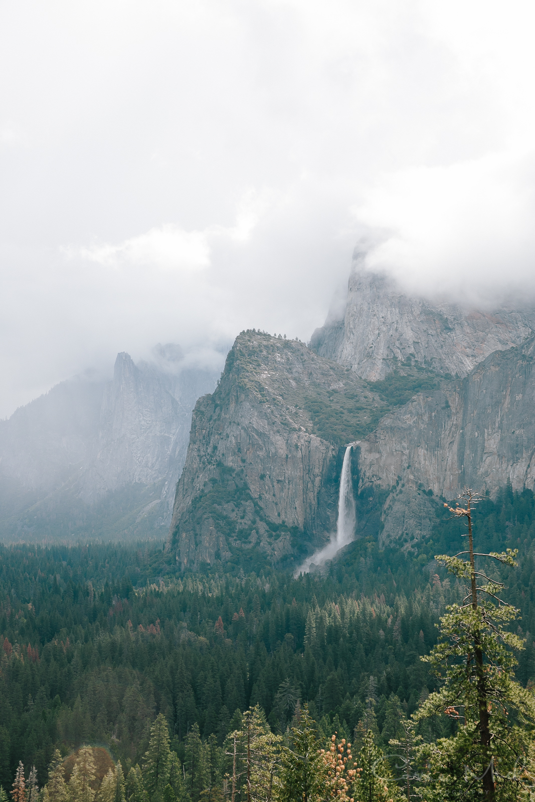 Yosemite April 2016 - Corrie Mick Photography-12.jpg