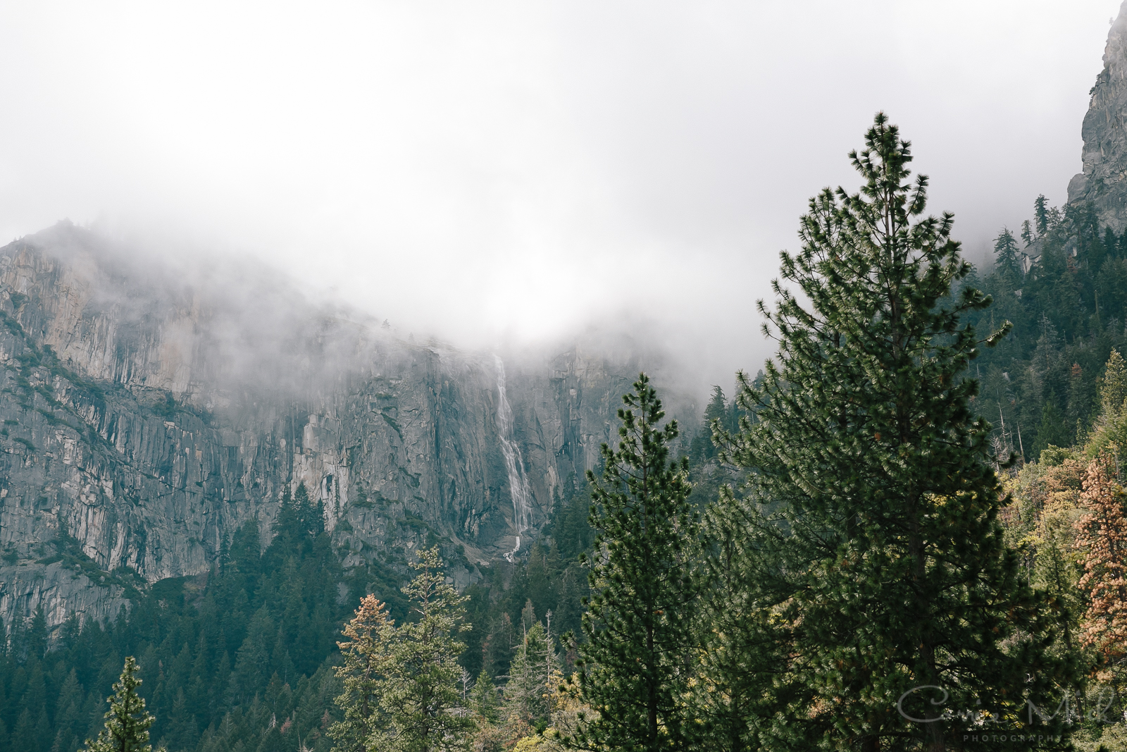 Yosemite April 2016 - Corrie Mick Photography-14.jpg