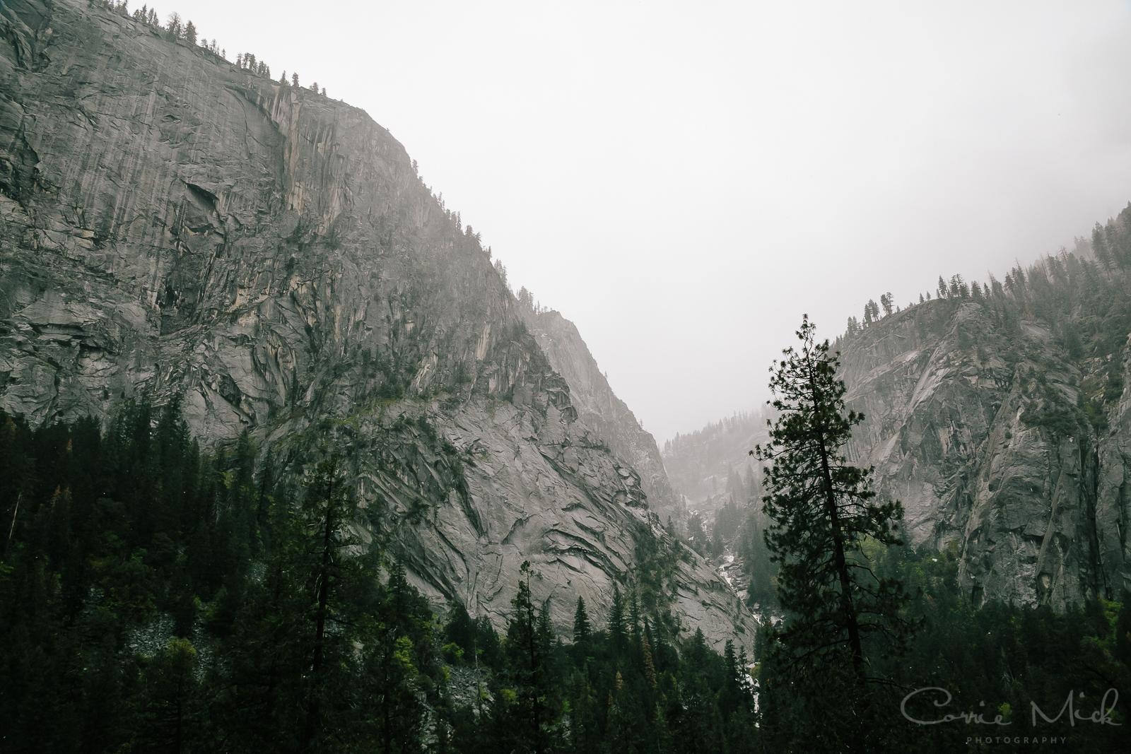 Yosemite April 2016 - Corrie Mick Photography-18.jpg