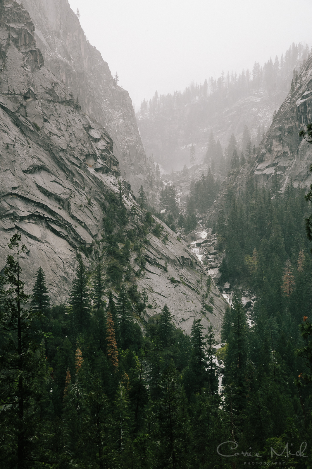 Yosemite April 2016 - Corrie Mick Photography-19.jpg