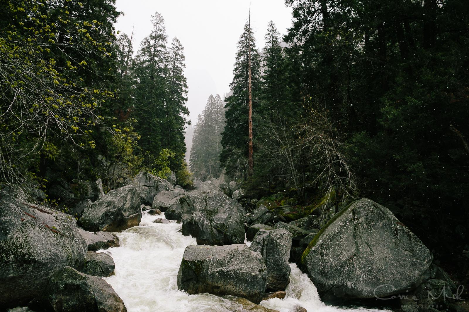 Yosemite April 2016 - Corrie Mick Photography-25.jpg
