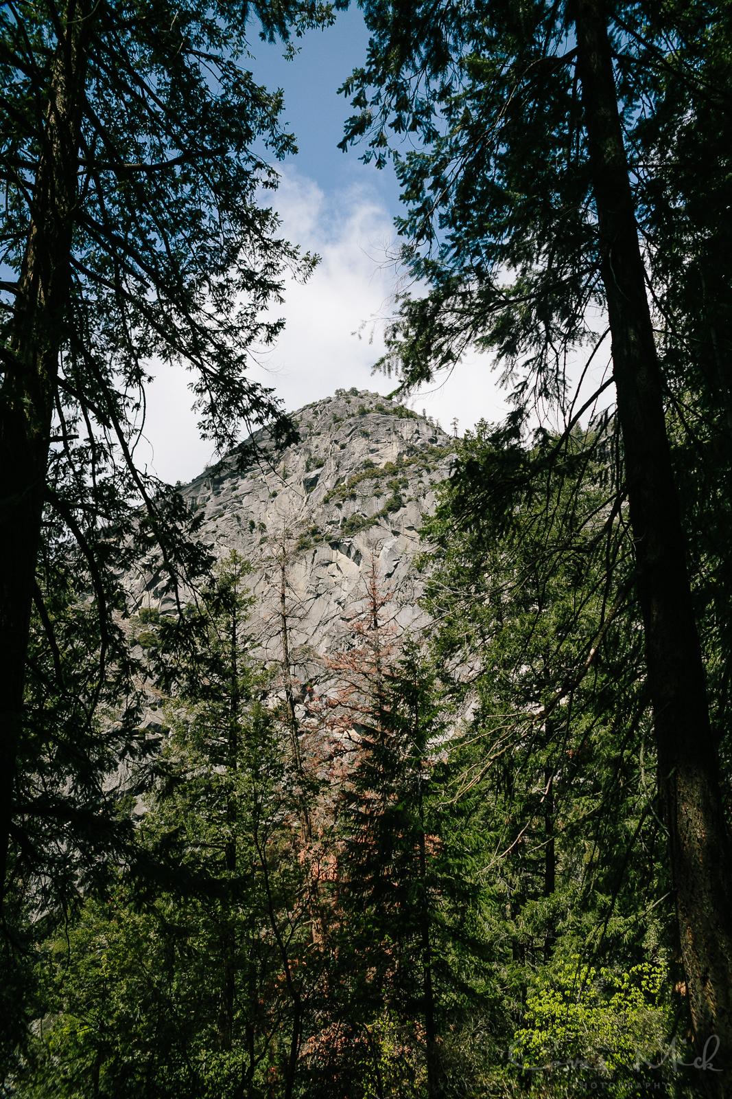 Yosemite April 2016 - Corrie Mick Photography-29.jpg