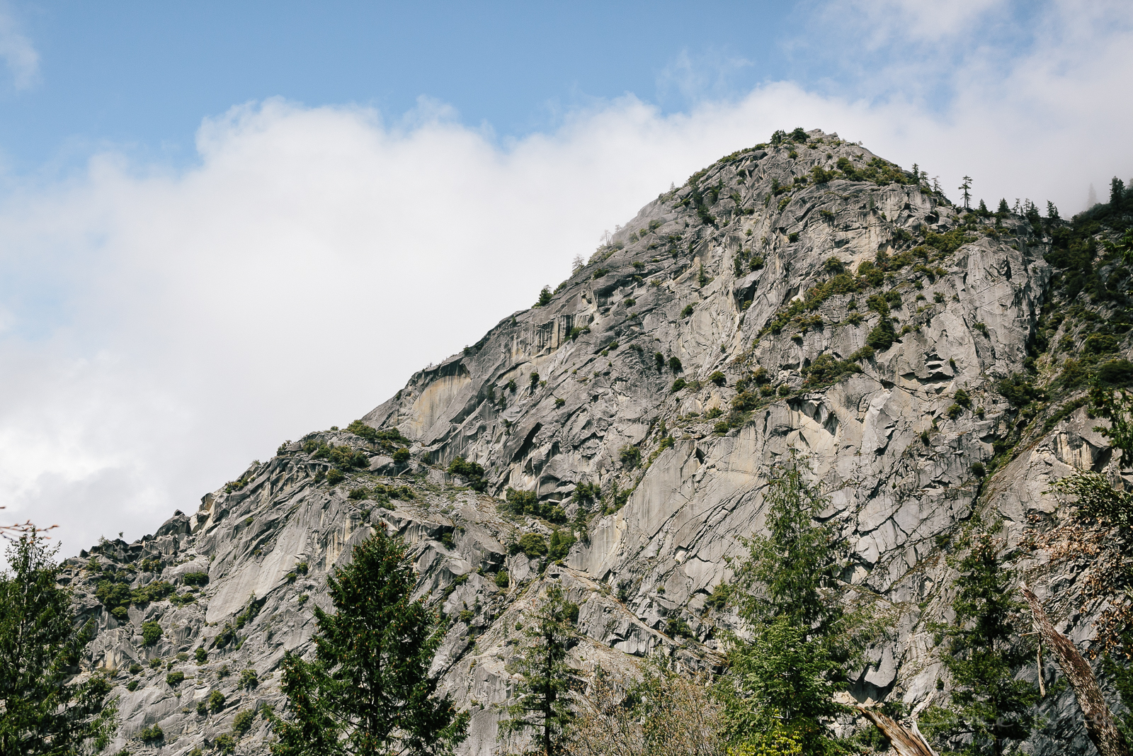 Yosemite April 2016 - Corrie Mick Photography-32.jpg